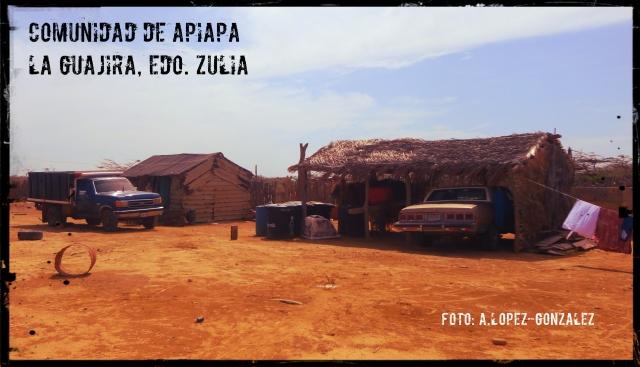 Apiapa_1